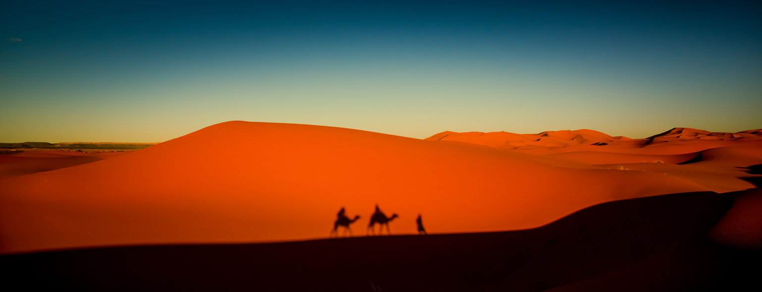 The Humpback of the Sahara: Merzouga Camel Trekking