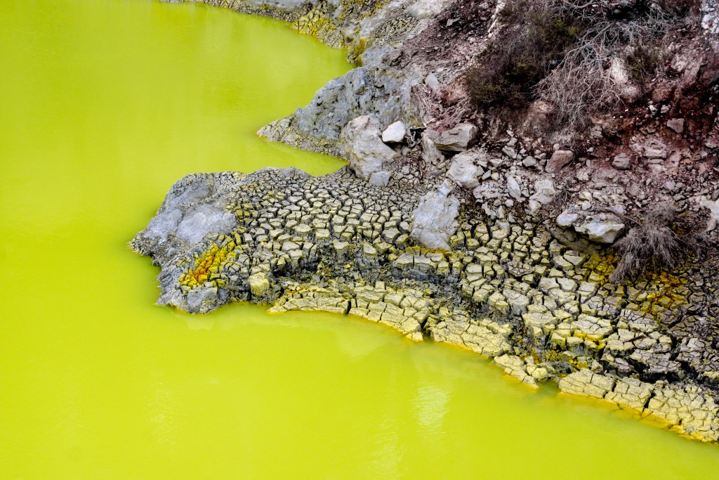 Neon green water and the multi-pigmented crusted bank at The Devil's Bath, Wai-O-Tapu, New Zealand