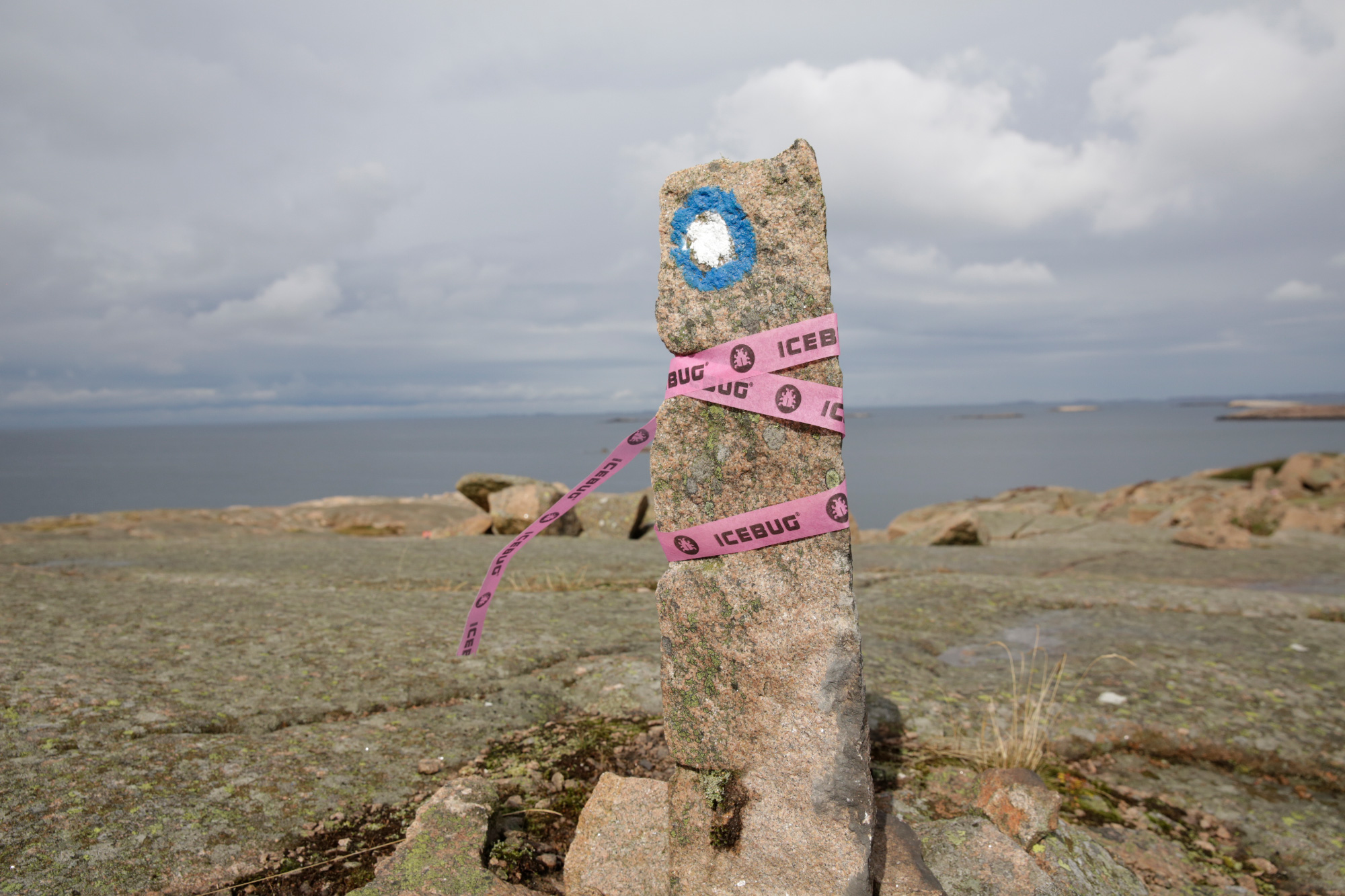 A upright rock marker set in the ground with pink tape around it and a blue circle filled with white marked on it on the Icebug Xperience marathon