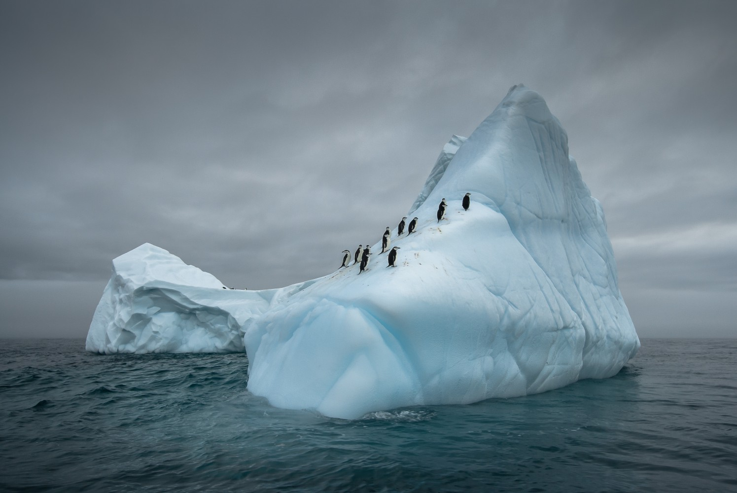 Antarctica: The Coldest Continent