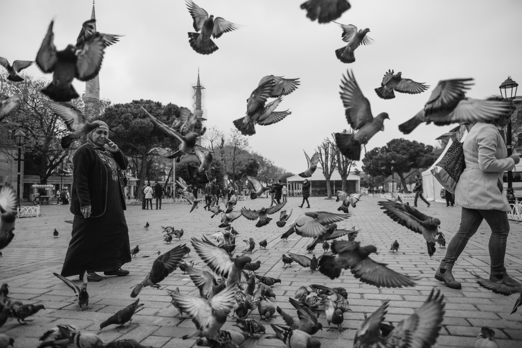 Istanbul: Finding Peace Among the Chaos
