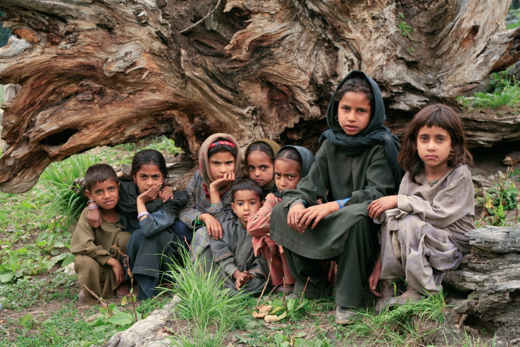 Pahari and Bakarwal children sit in front of a fallen tree for their photo. Lidderwat, Kashmir, India.