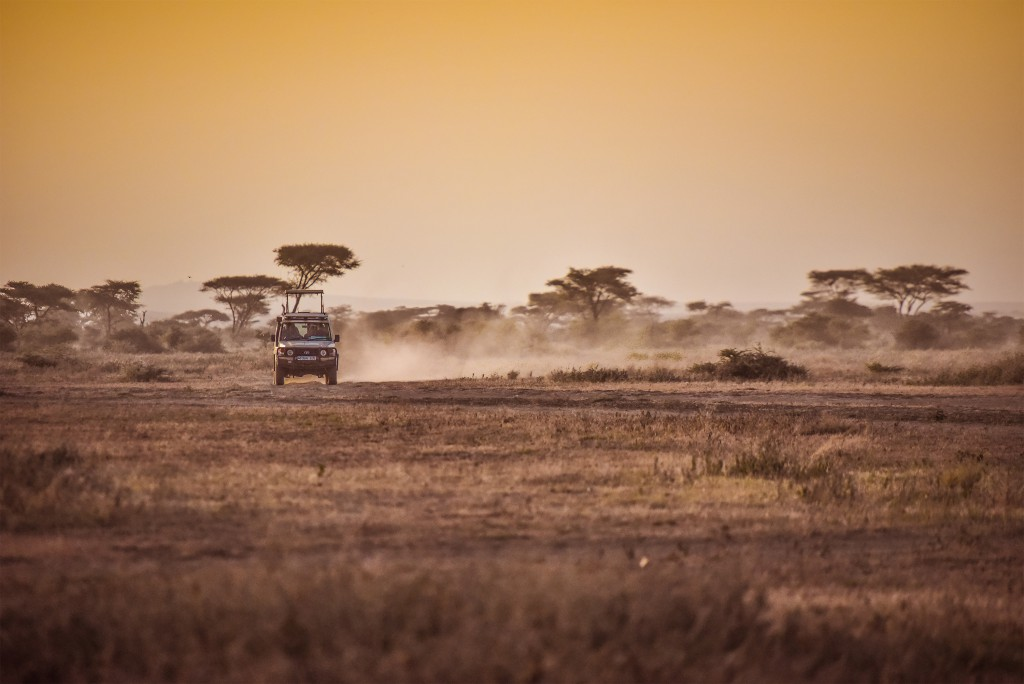 Game drive at sunset. Photo by Nick Walton
