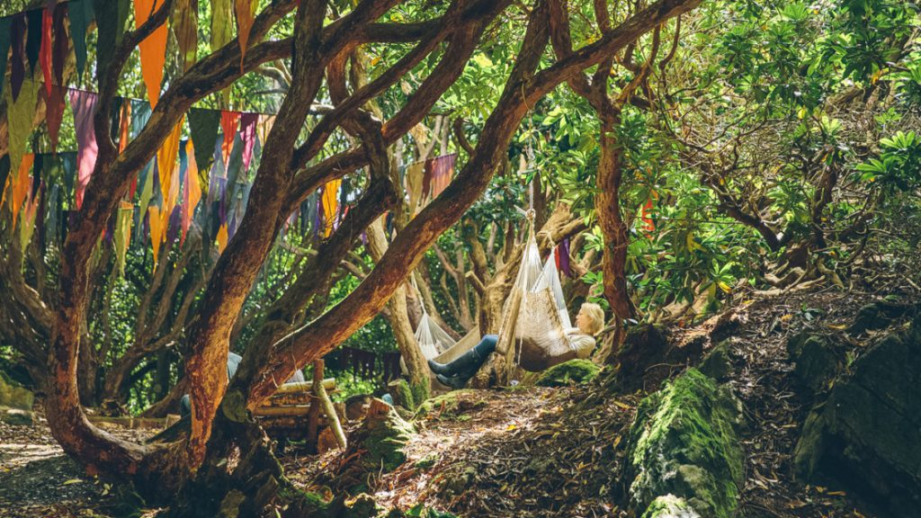 Man resting in a hammock tied between trees in a forest hollow hung with colourful flags