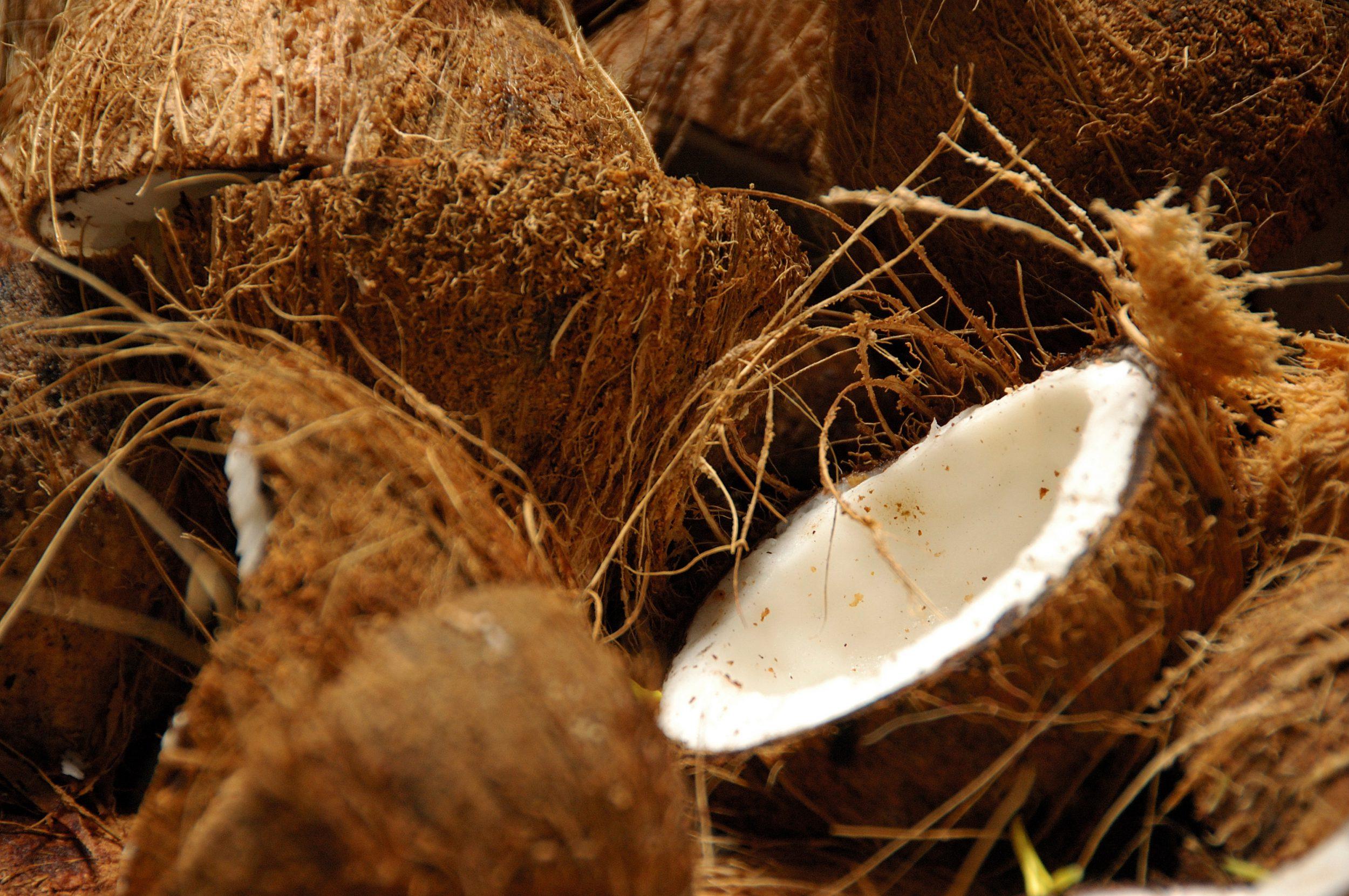 A split coconut