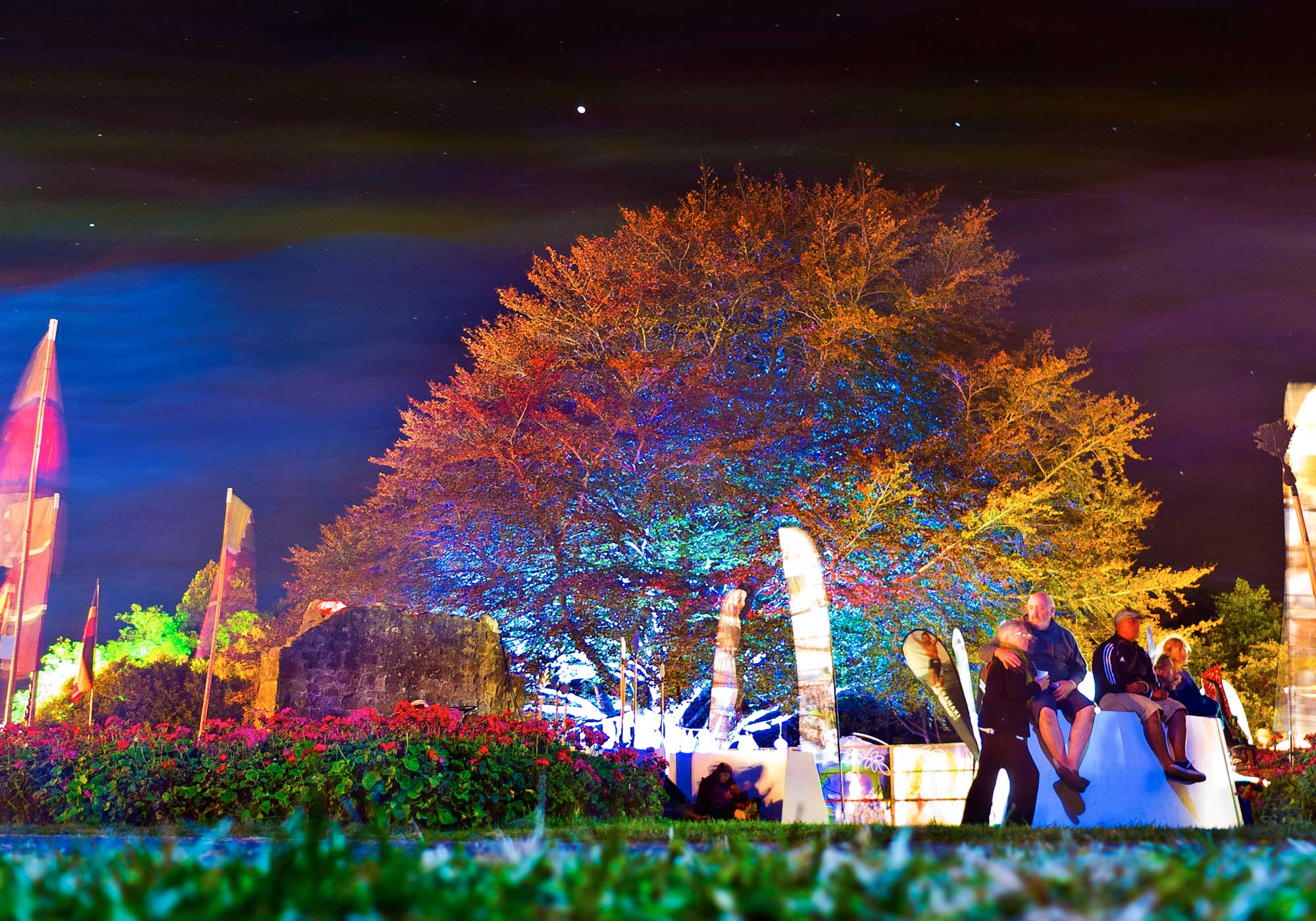 Colourfully lighted up tree against the night sky with a couple in the foreground at WOMAD, Taranaki