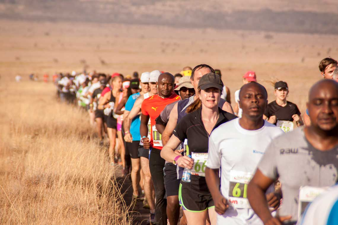 Close up of runners in single file running through the thigh-high brown grass at Lewa Wildlife Conservancy in the Safaricom Marathon