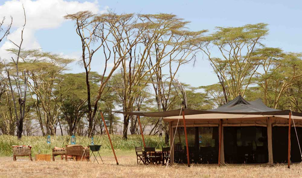 A gazebo and Tent with seating outside and trees in the background for the Safaricom Marathon