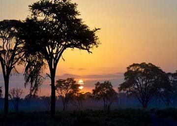 Safaricom-Sunset