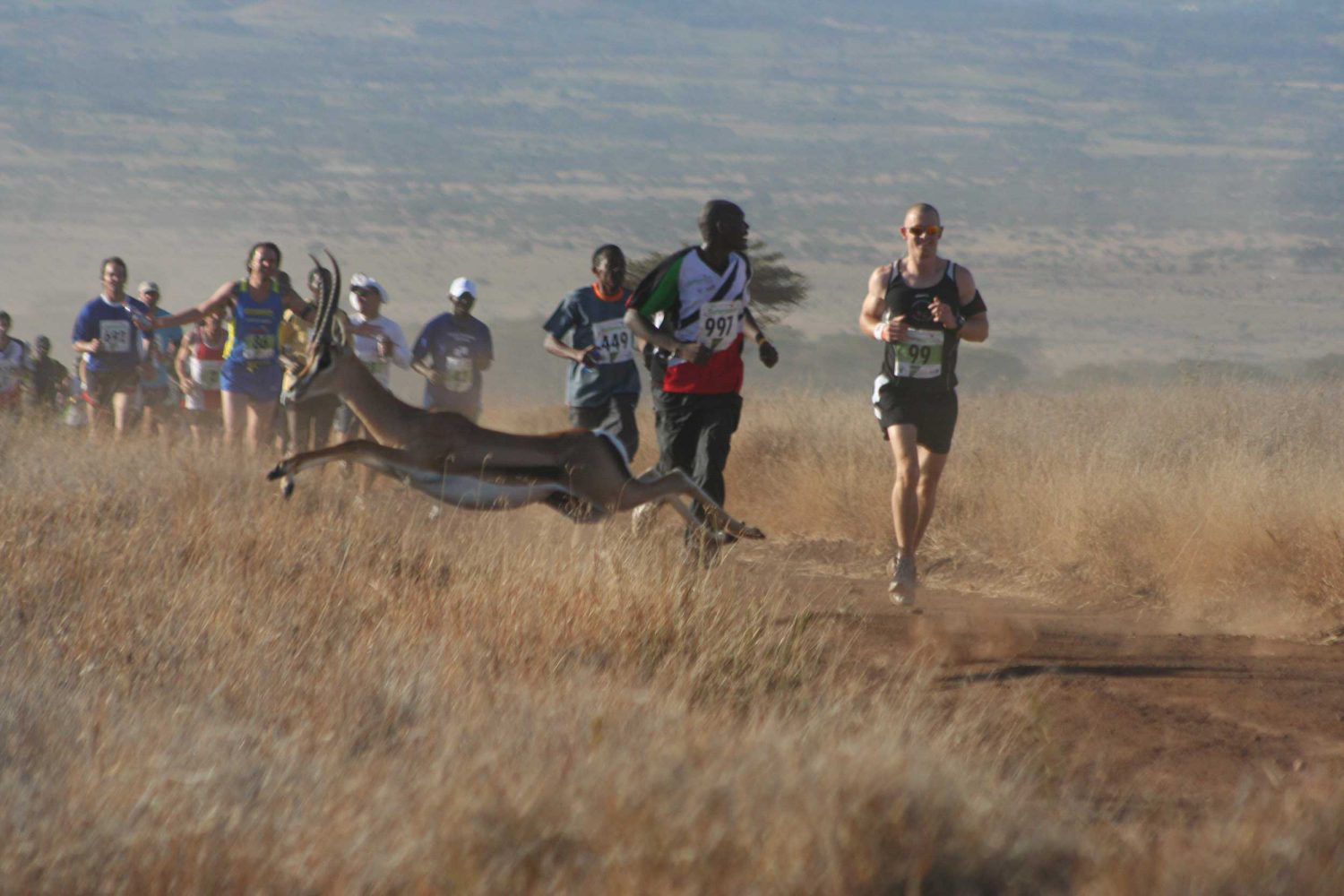 Safaricom Marathon: Run Wild Through Kenya