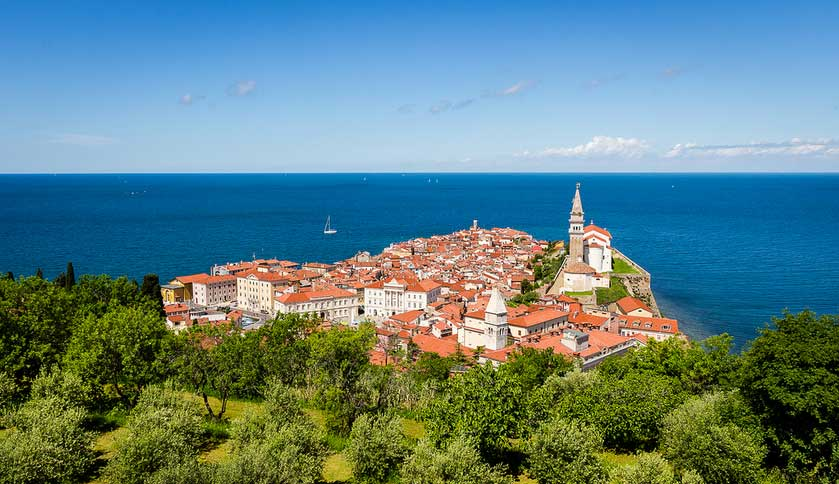 A view down to the red roofs of Piran town and the Adriatic sea beyond, Slovenia (Slovenia Explorer)