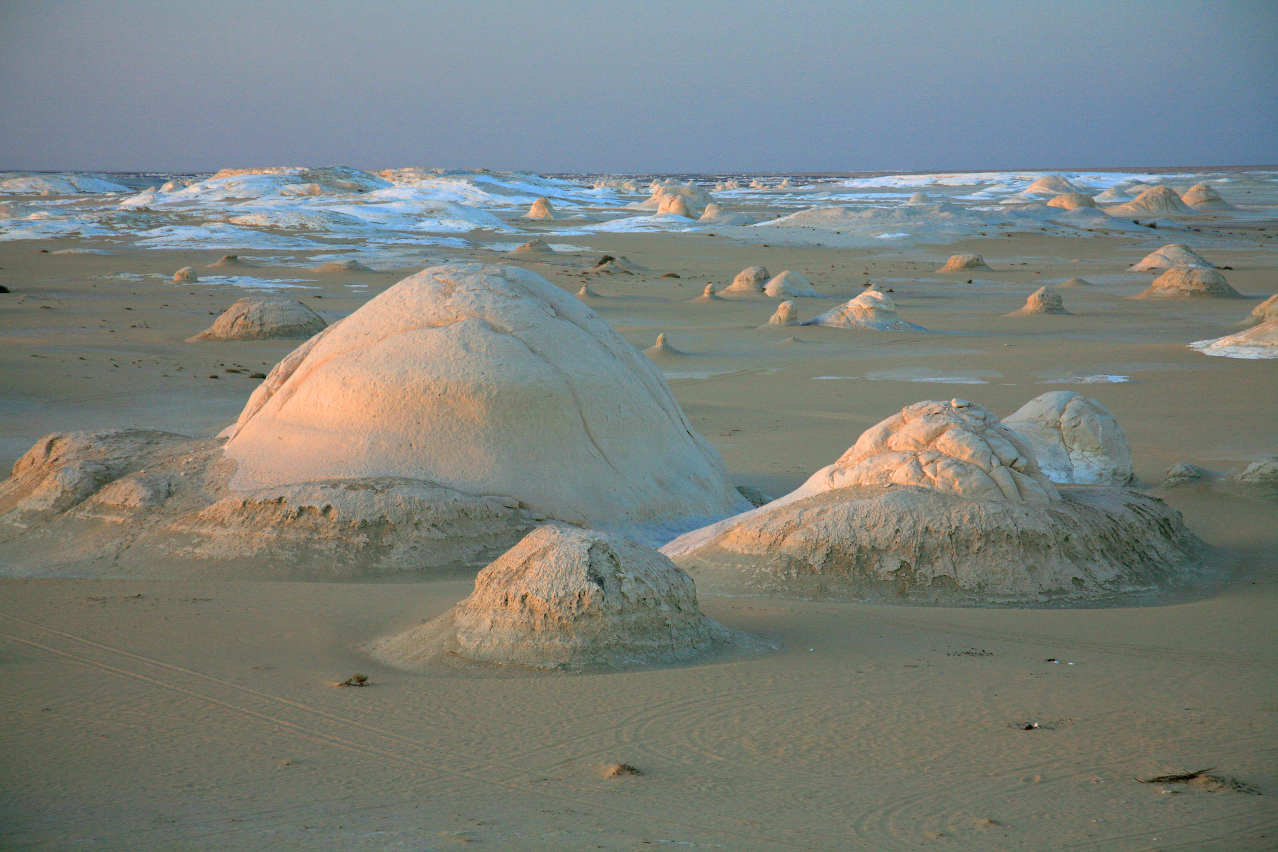 Small humps in the sand with white foamy striations in the background