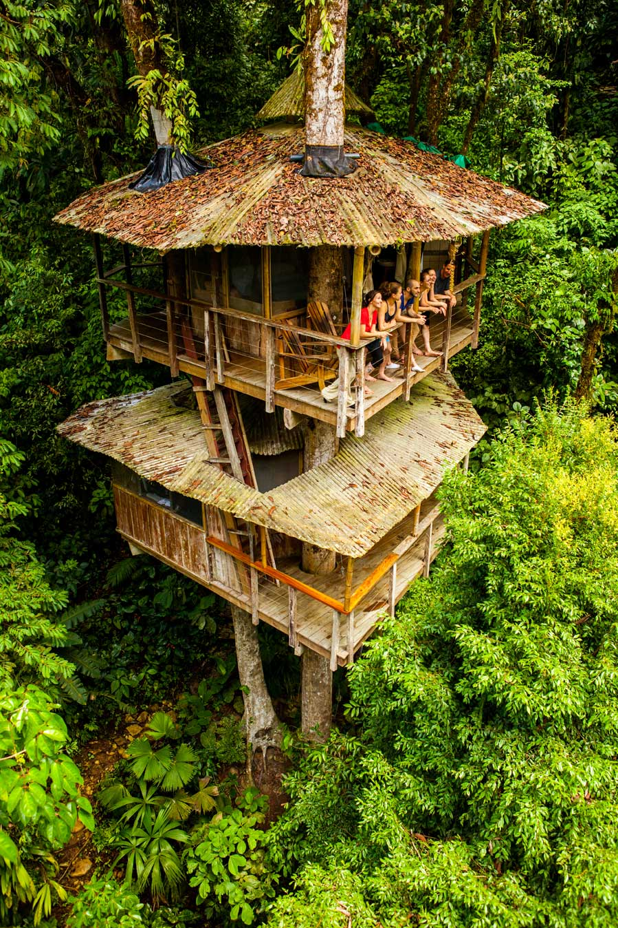 Tree House Community: A group standing on the balcony of the second storey of a treehouse nestled in lush treetops
