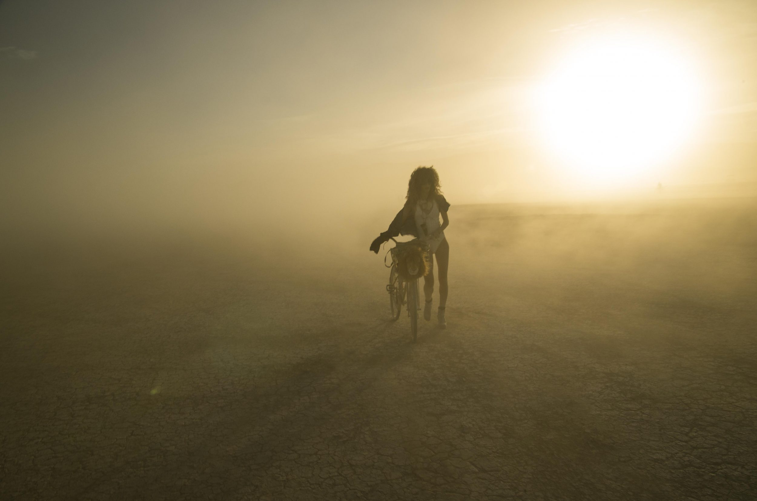 Golden Lioness, Burning Man (by Thai Neave, travel photographer)