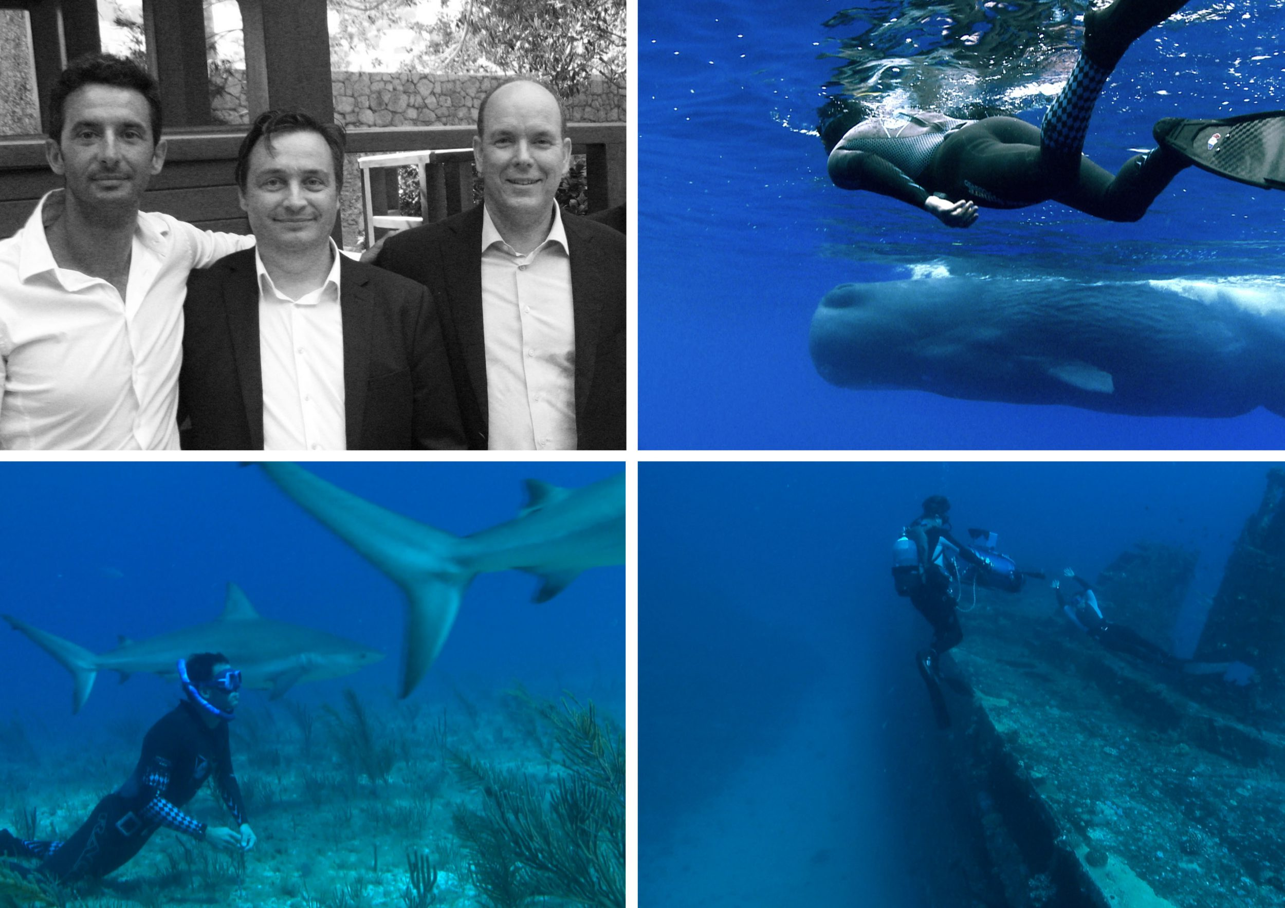 Clockwise from left: Pierre Frolla, Prince Albert and Philippe Gerard, swimming with whales, Pierre in his element with sharks, filming On A Long Breath