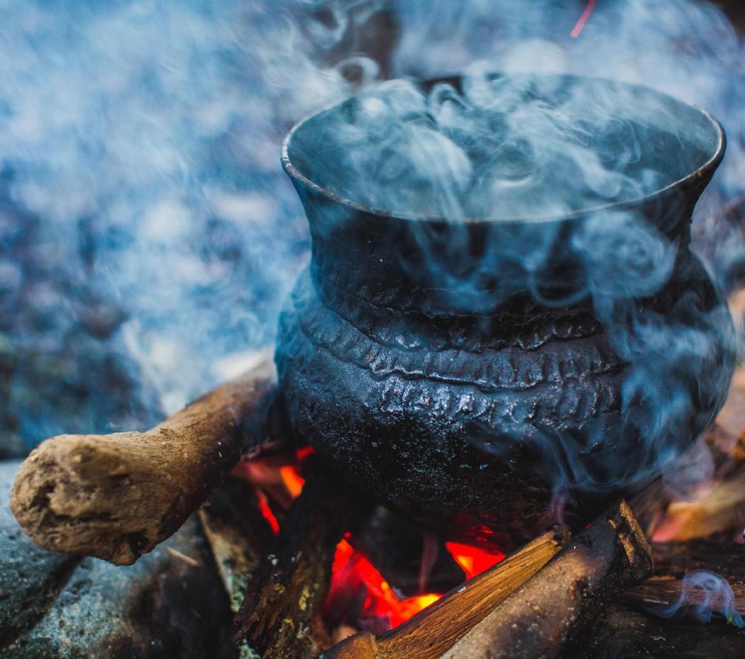 The Tea of Life in Ecuador