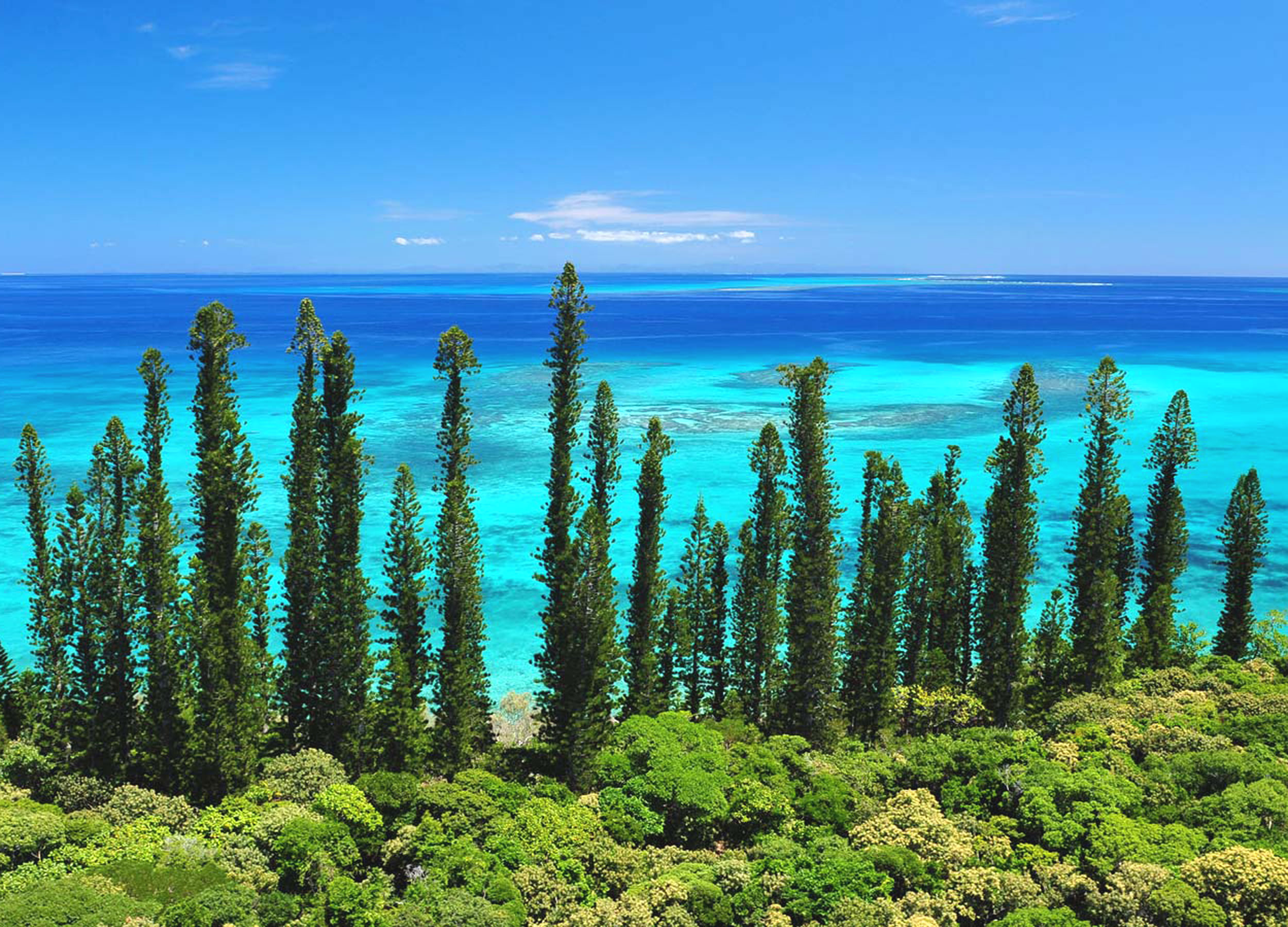 Ocean view from the Îsle of Pines in New Caledonia.