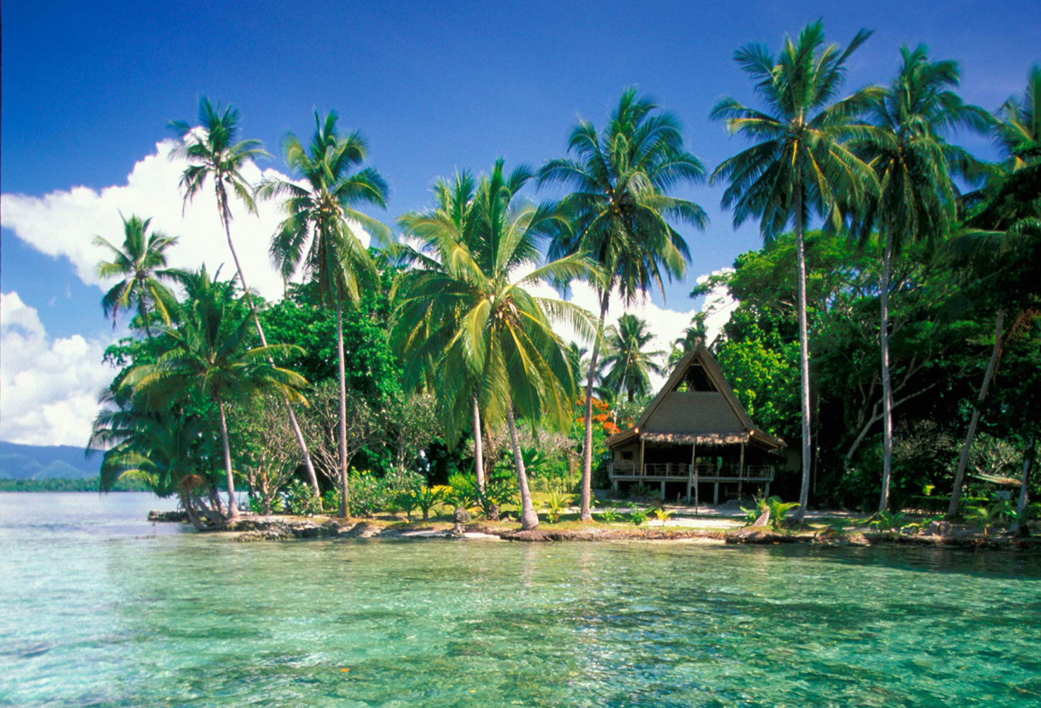 Dipping a Toe In: Snorkelling at Uepi Island Resort