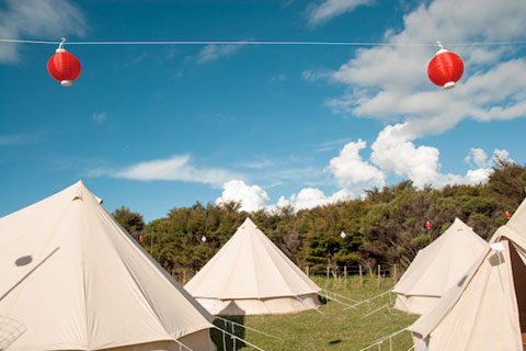 White tents in a field with red lanterns strung up above them