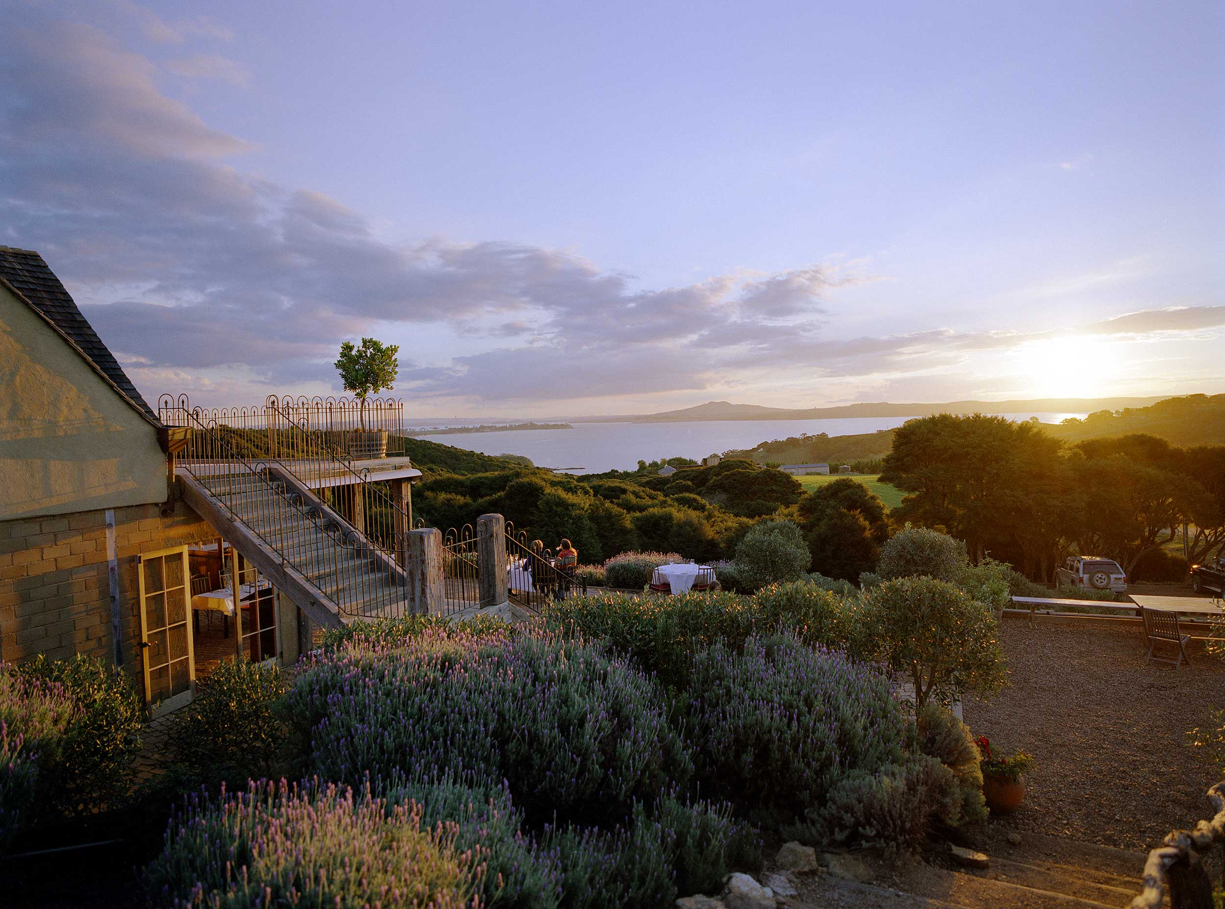 Mudbrick Vineyard at dusk, Waiheke, New Zealand