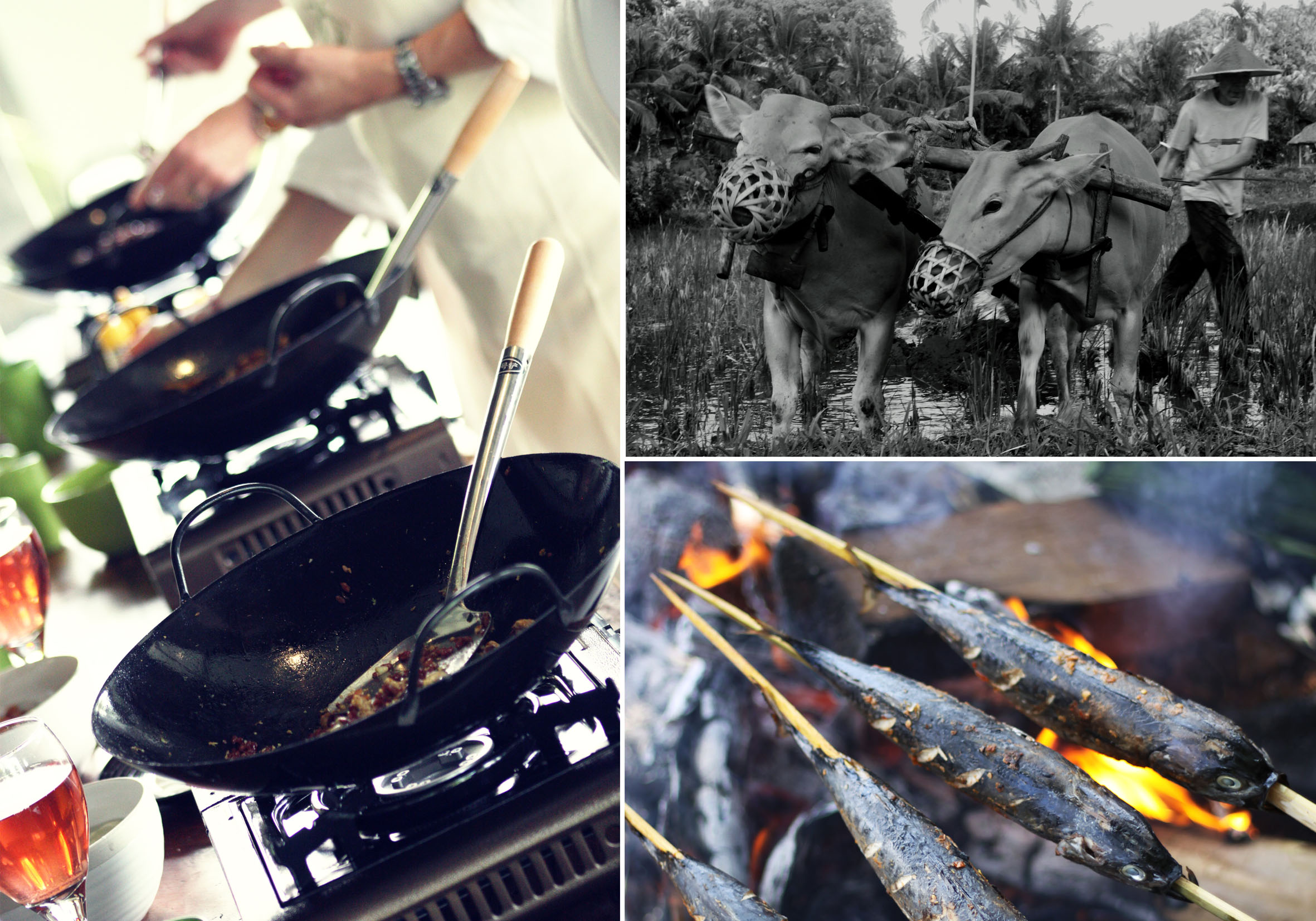 Collage of food cooking and buffaloes ploughing