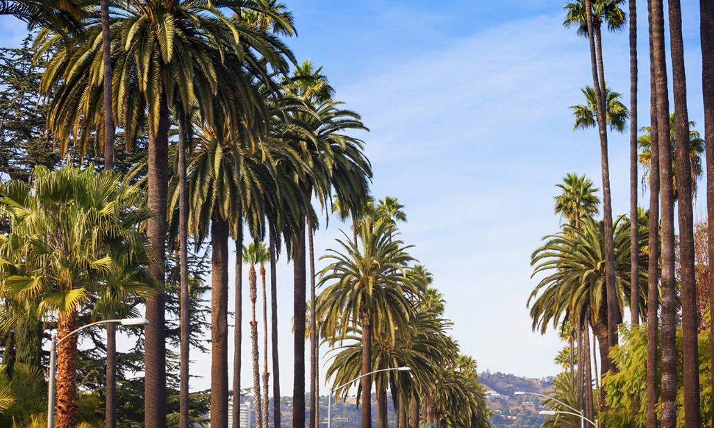 Four Seasons LA: A Quick Escape