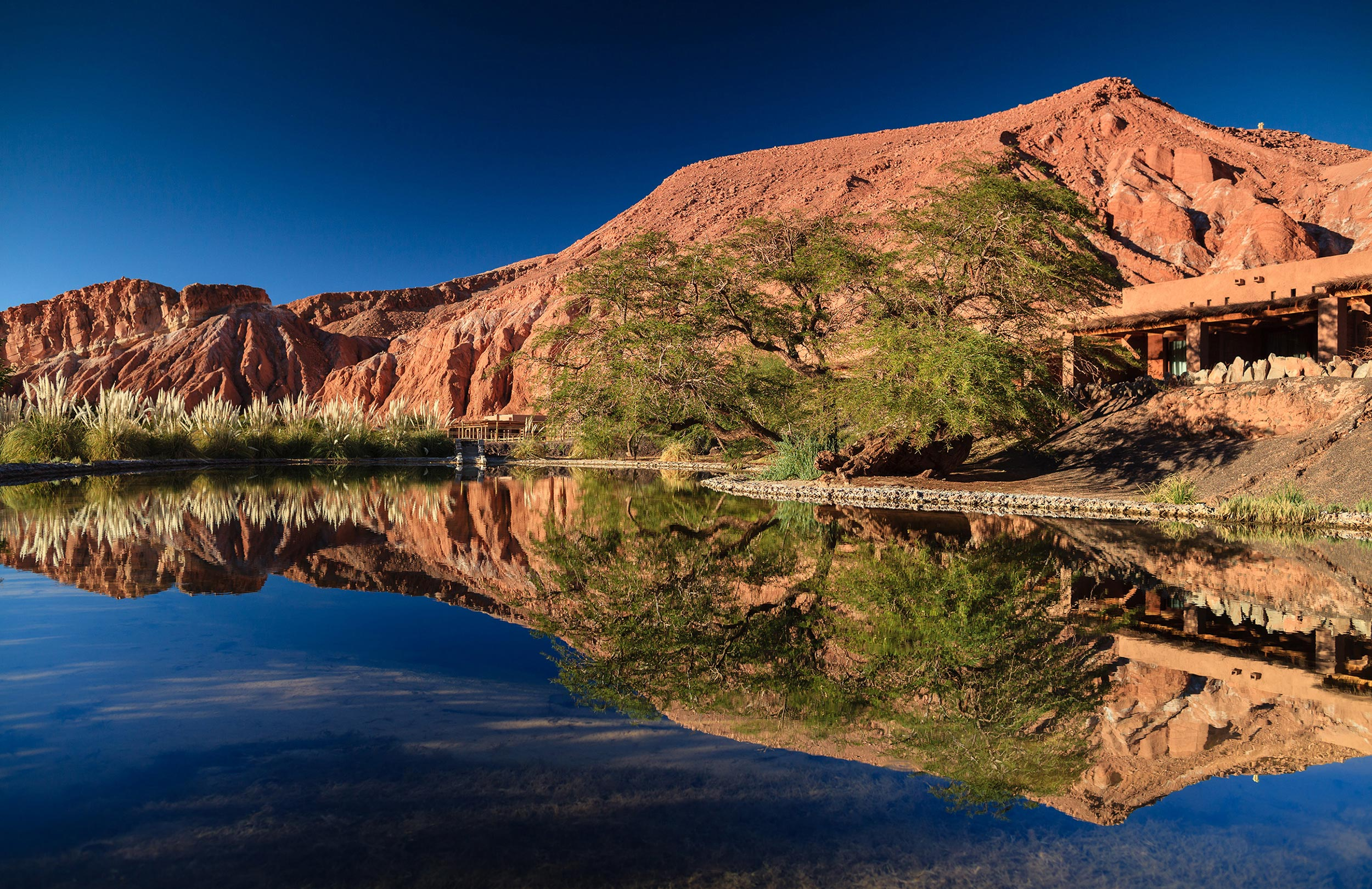 Reflection of Alto Atacama and the mountain behind it in the still water of the lake by it .