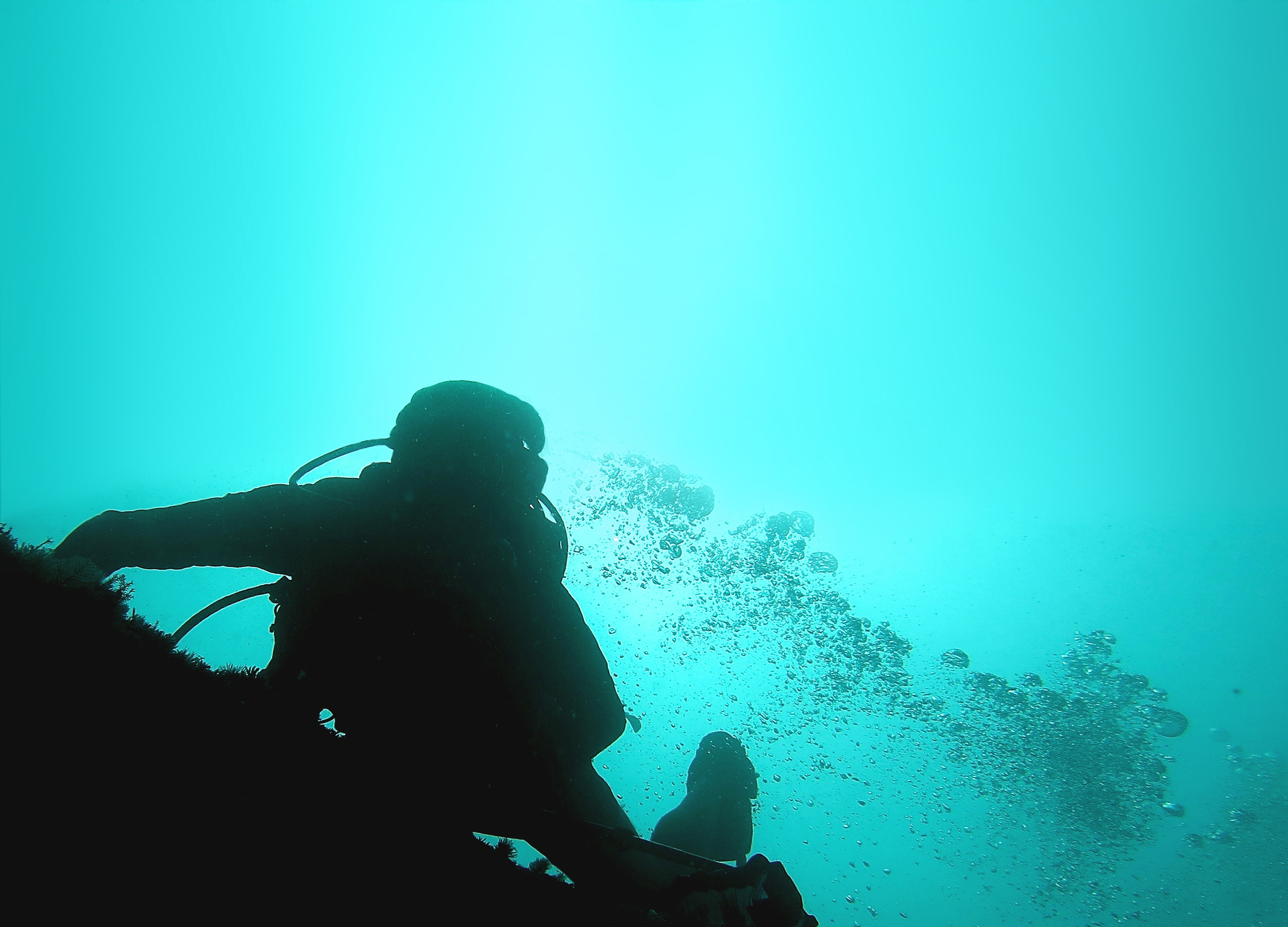 Every dive site in Raja Ampat offers its own challenges and adventures.