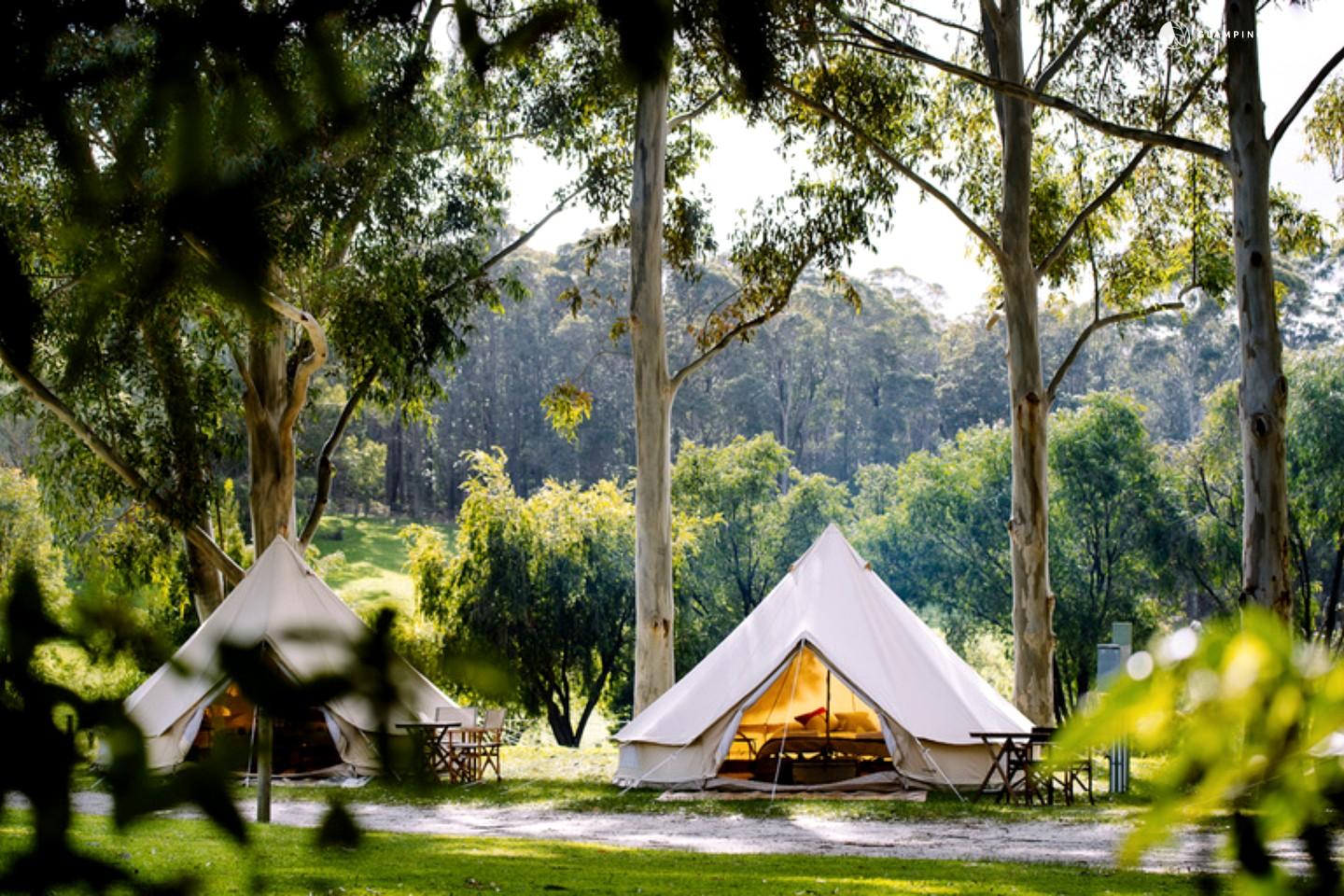White bell tent between two trees on a sunny day, Australia