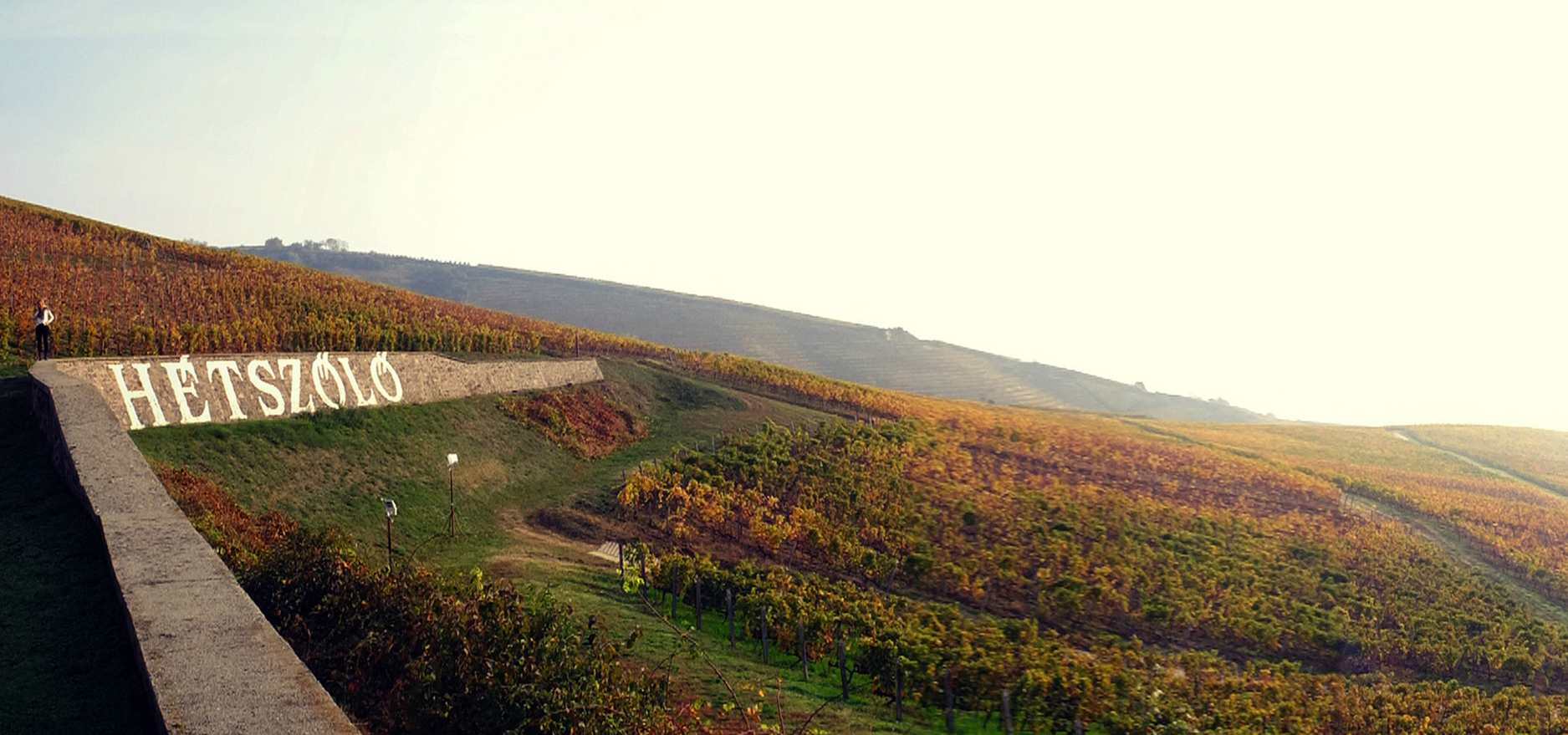 Tokaj Hétszölö, a Hungarian vineyard, has a history for Hungarian wines and exemplify the esteemed history of the estate and the pedigree of the region.