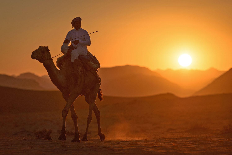 Rhythm of the Desert: Jordan's Wadi Rum