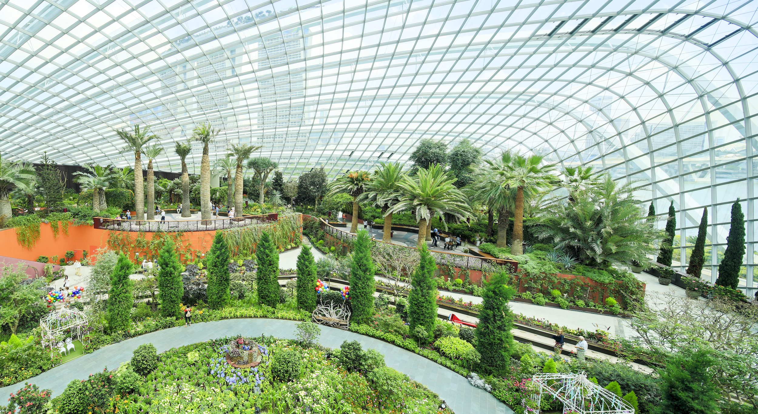 Large greenhouse showing trees, palms and shrubs with a pathway winding through the area