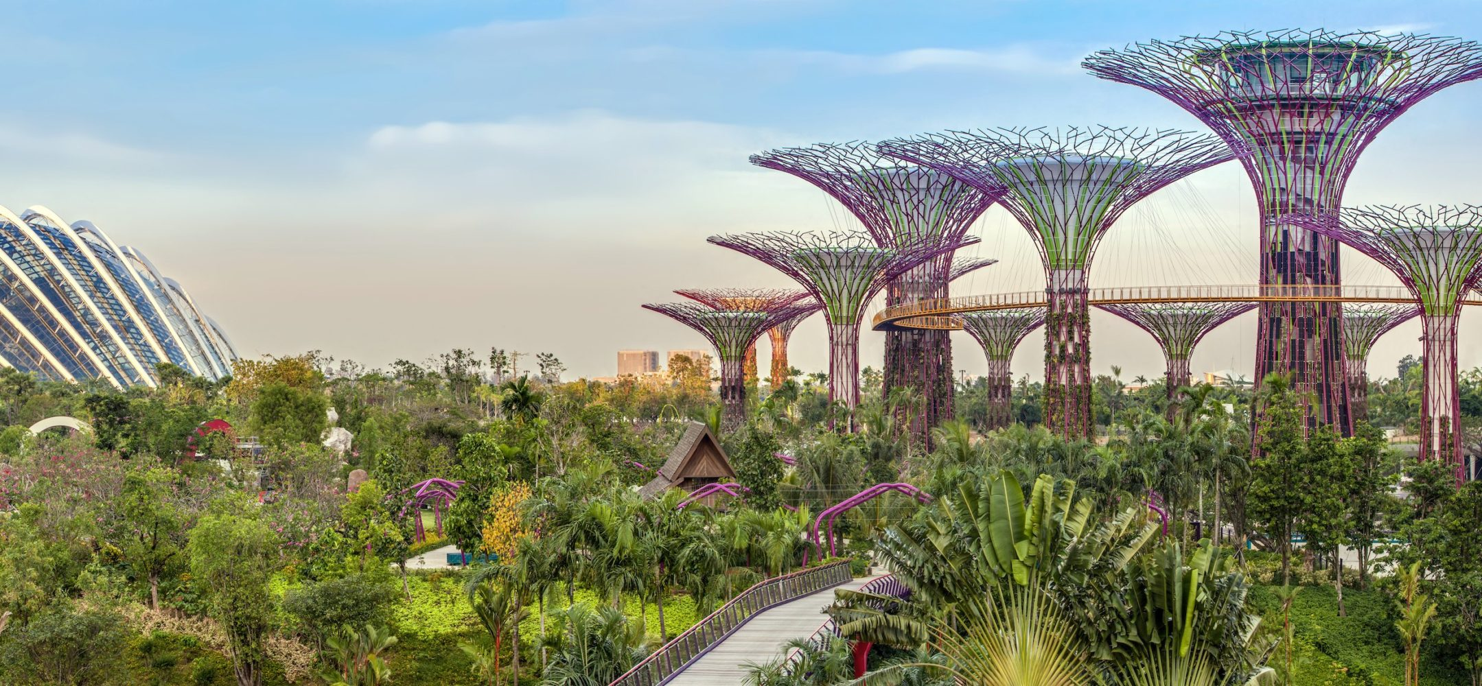 Singapore: The City in a Garden