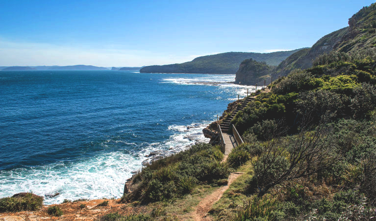 Mount Bouddi walking track with a boardwalk bridge and steps in the bush on a cliff above the sea, Bouddi National Park