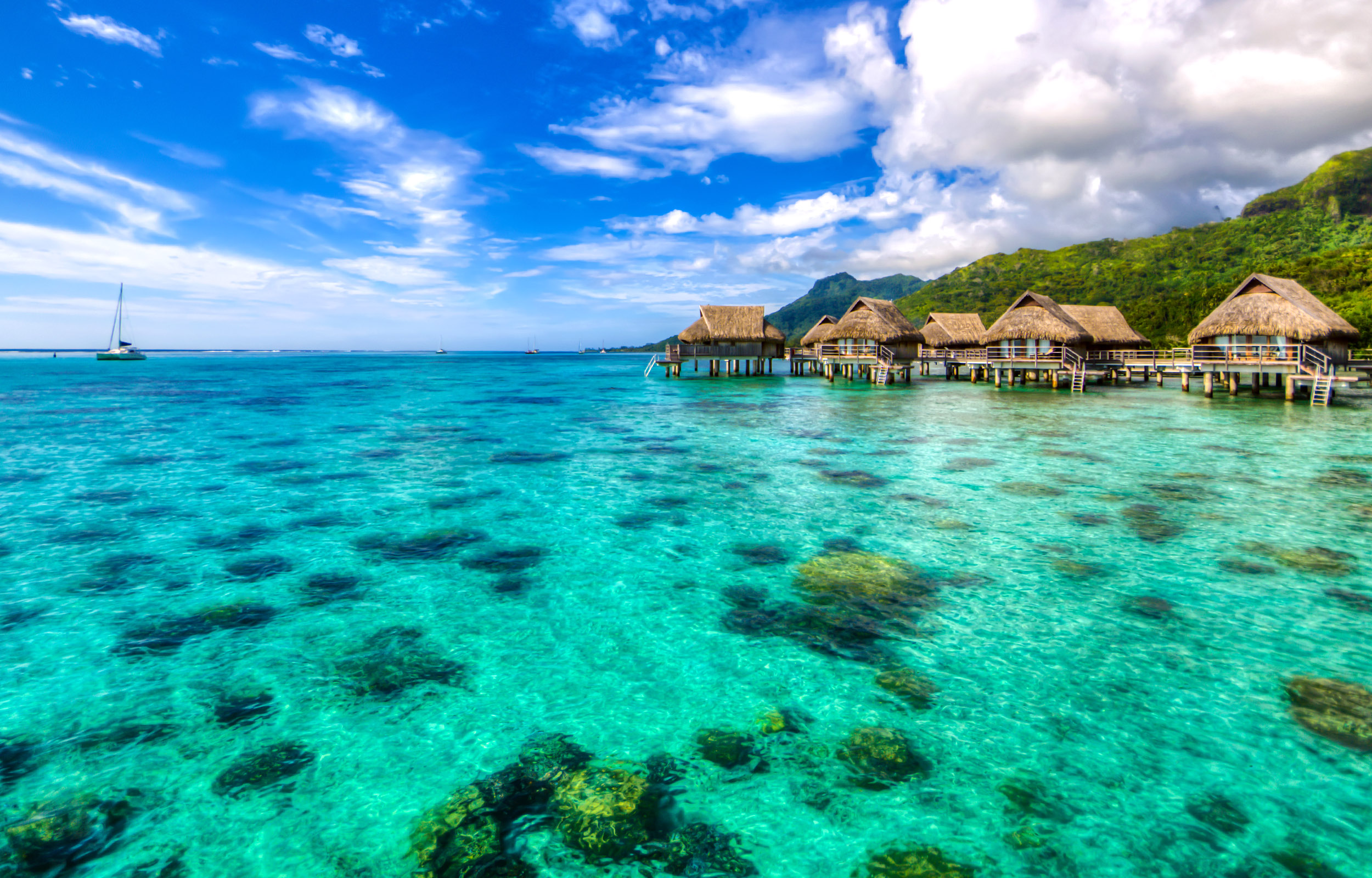 View of over-water bungalows and shallow blue waters with coral visible on the ocean floor in Tahiti