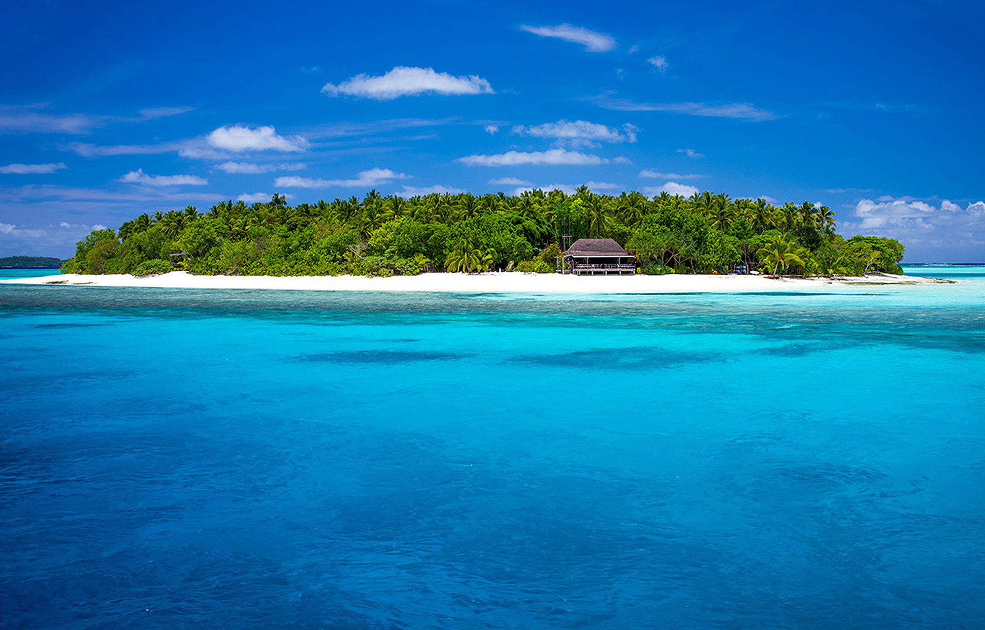 An island in the sea with white sand beach, a thatched house nestled in the trees by the beach