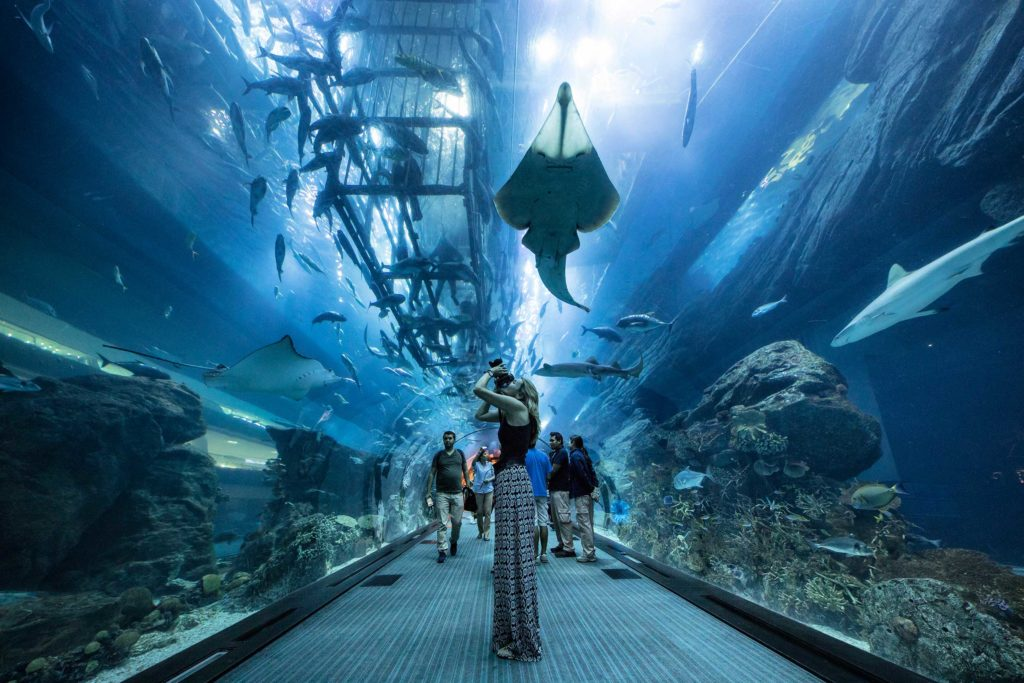 Being inside the largest mall in the world, the Dubai Aquarium is simply astonishing and attracts more than 750,000 visitors every week. Standing in the massive plexiglass tunnel and being engulfed by the endless flow of fish, sharks and manta rays was surreal. One of the highlights of being in Dubai and a must for any visitor.