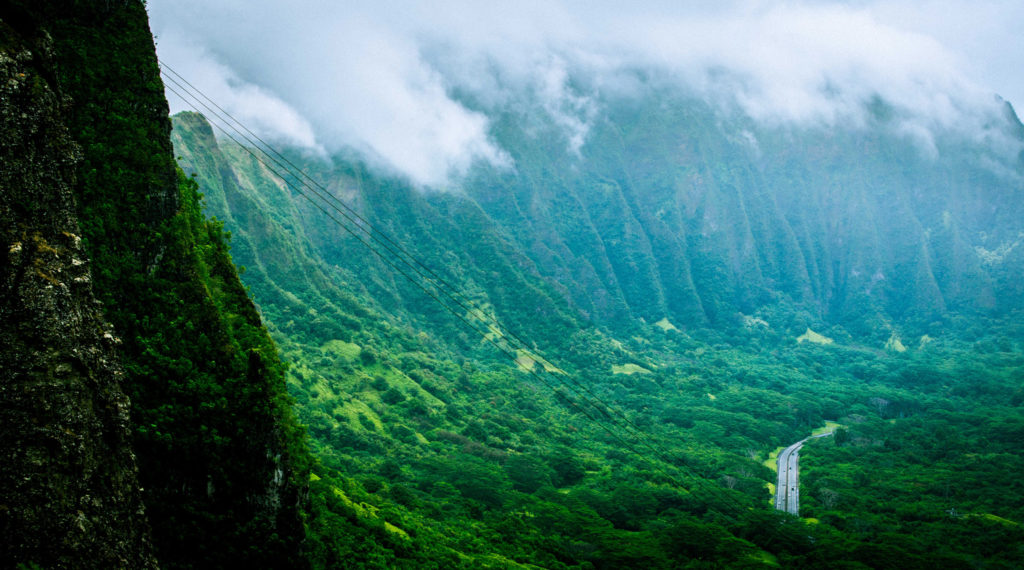 We are heading to the east side of the island, to the lush, mountainous region where Jurassic Park was filmed. The first stop is Pali Lookout (pictured).