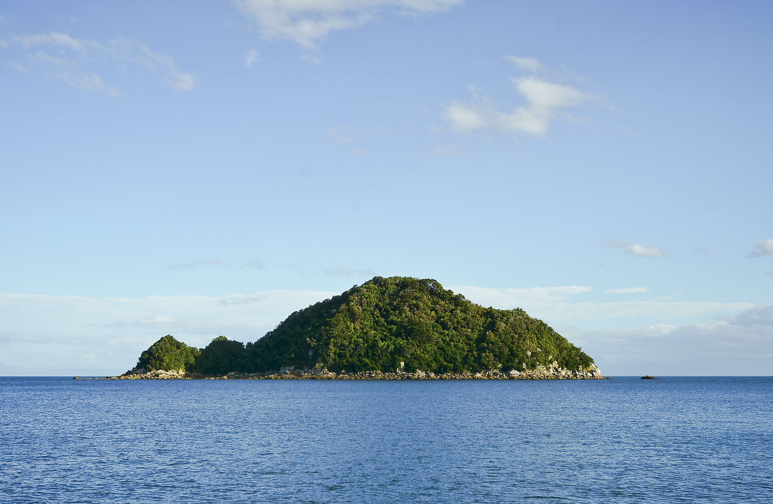 A green bush covered island rising out of the blue sea, New Zealand
