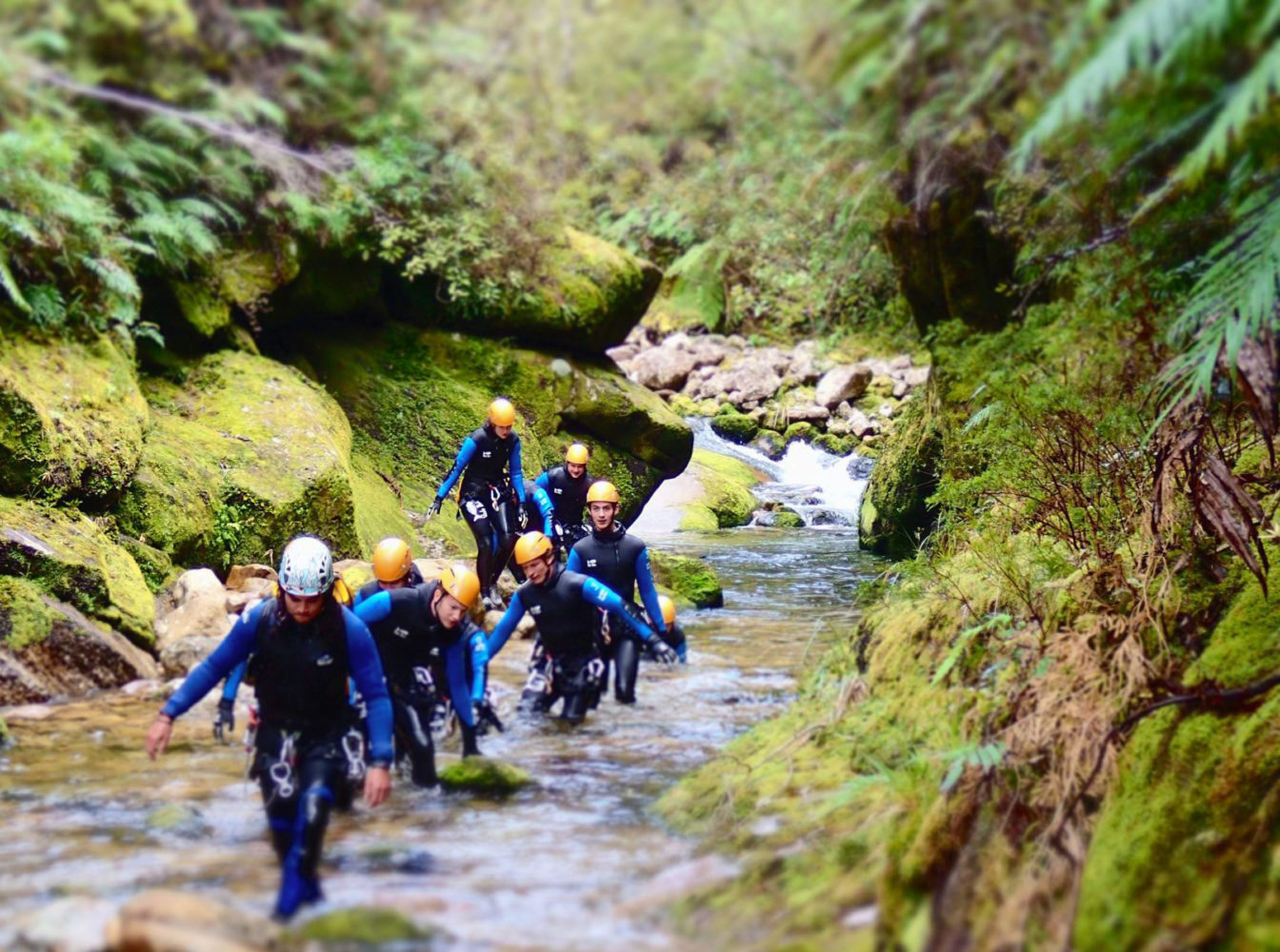 Riding the Slots: Canyoning in Abel Tasman National Park