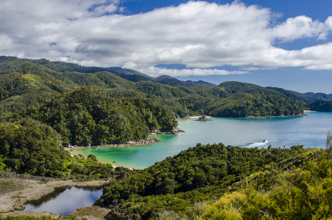 Setting Sail in Abel Tasman National Park