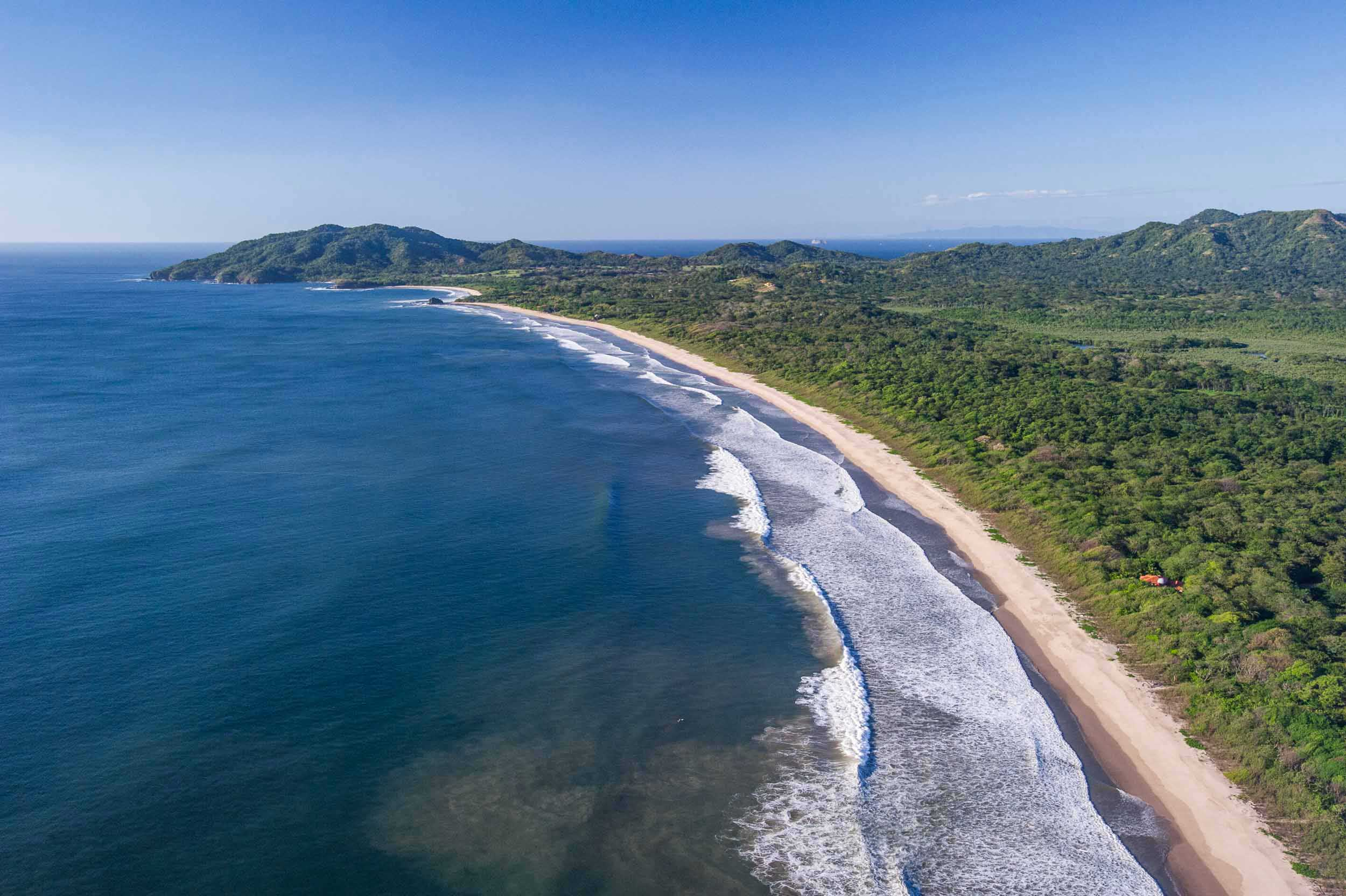 Aerial view of a long sweeping beach nestled between surf and forest, Playa Grande, Costa Rica