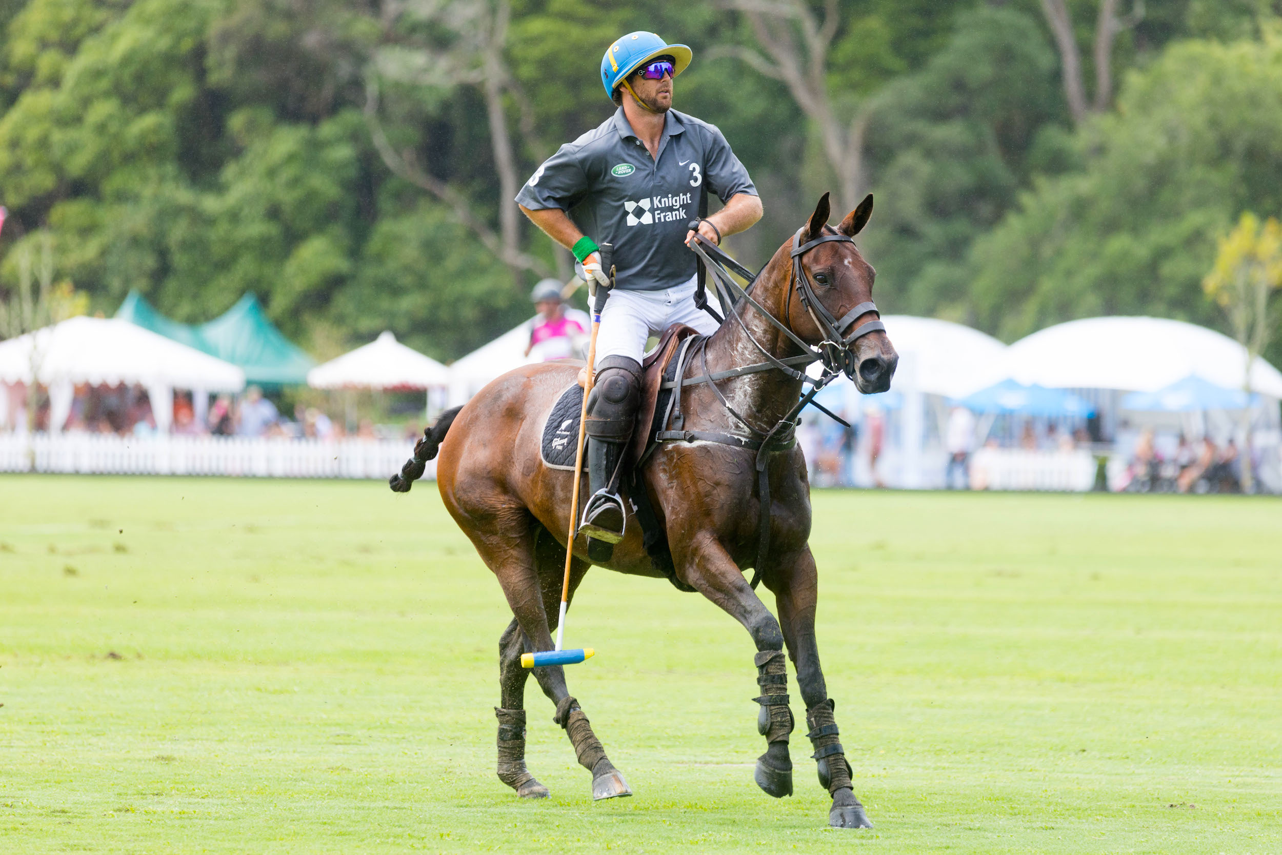 Polo player riding a brown horse, holding a polo stick