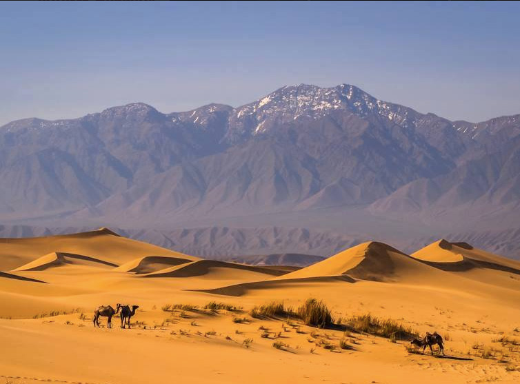 Beauty of Mongolia Tour