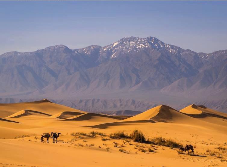 Beauty of Mongolia Tour
