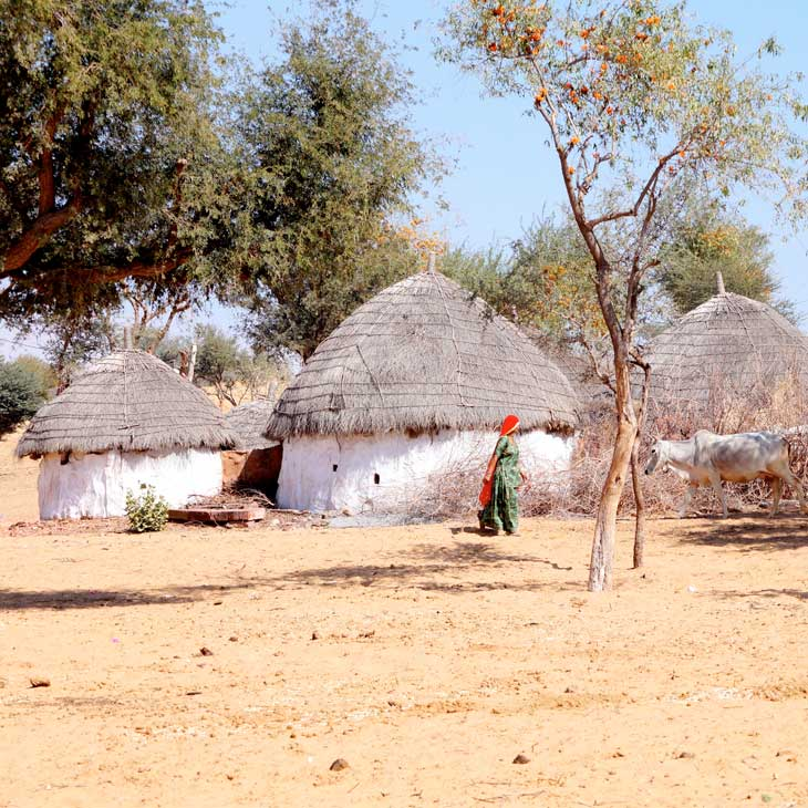 Village and Crafts Experience in Rajasthan