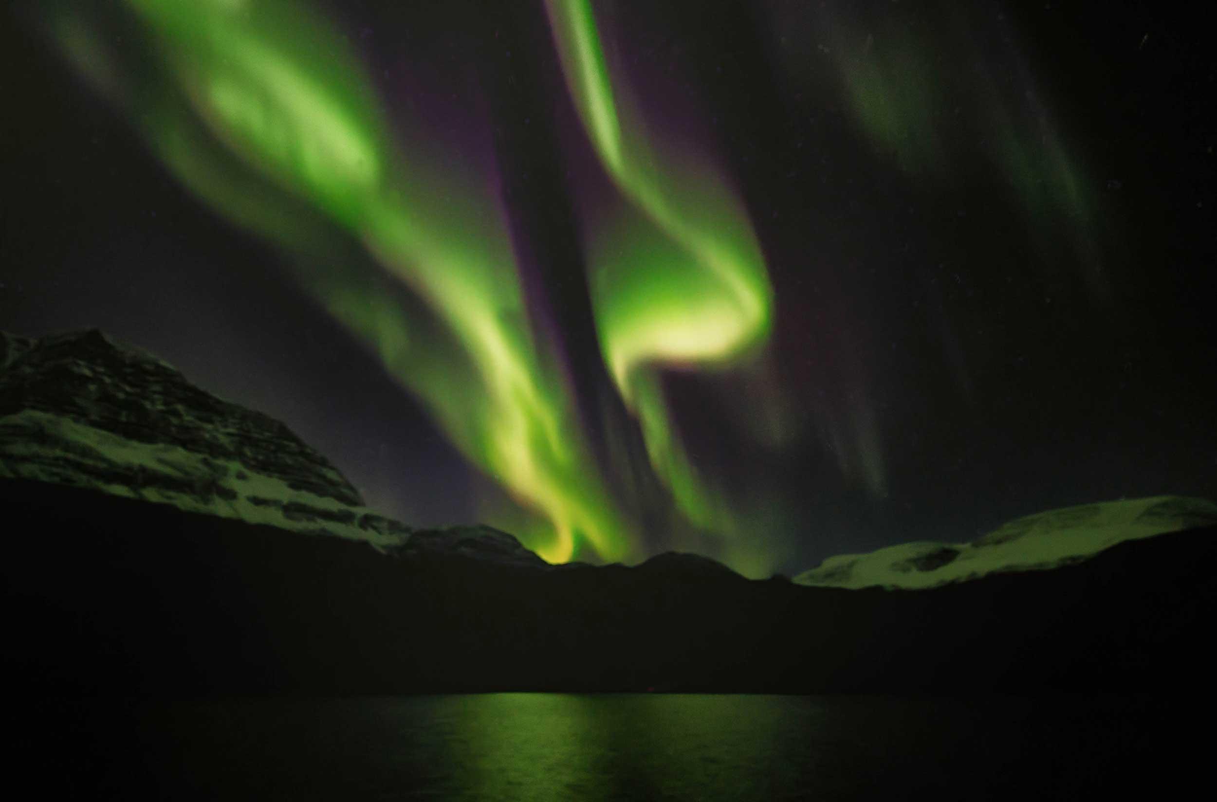 Green aurora in the dark night sky above a sound, Greenland