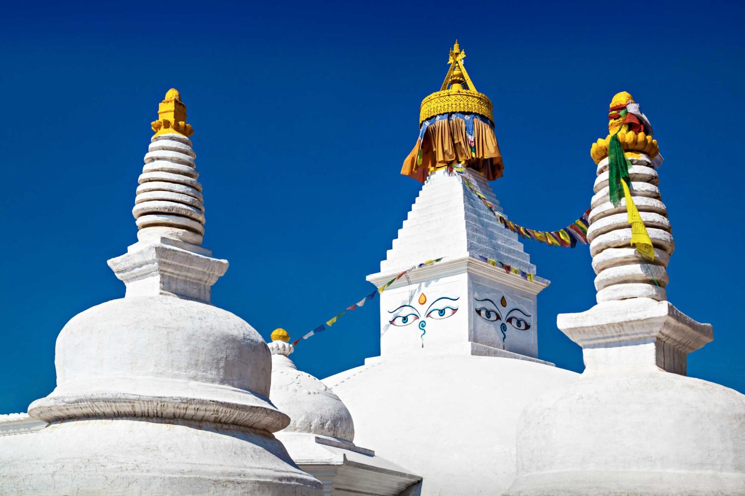 Wildlife and Cultural Tour of Nepal