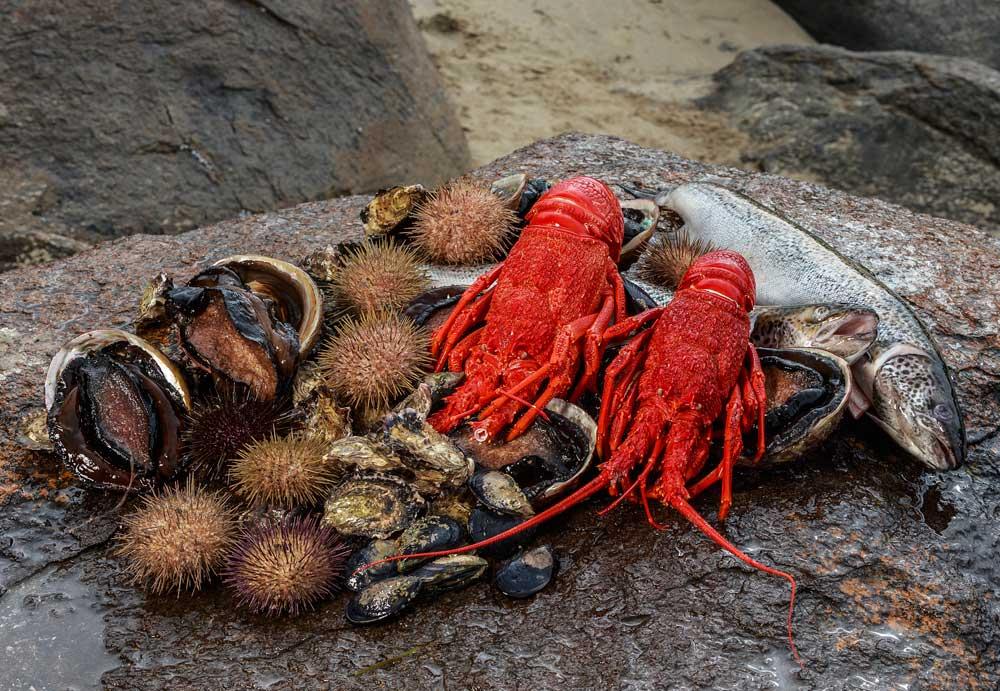 Tasmania Seafood Seduction