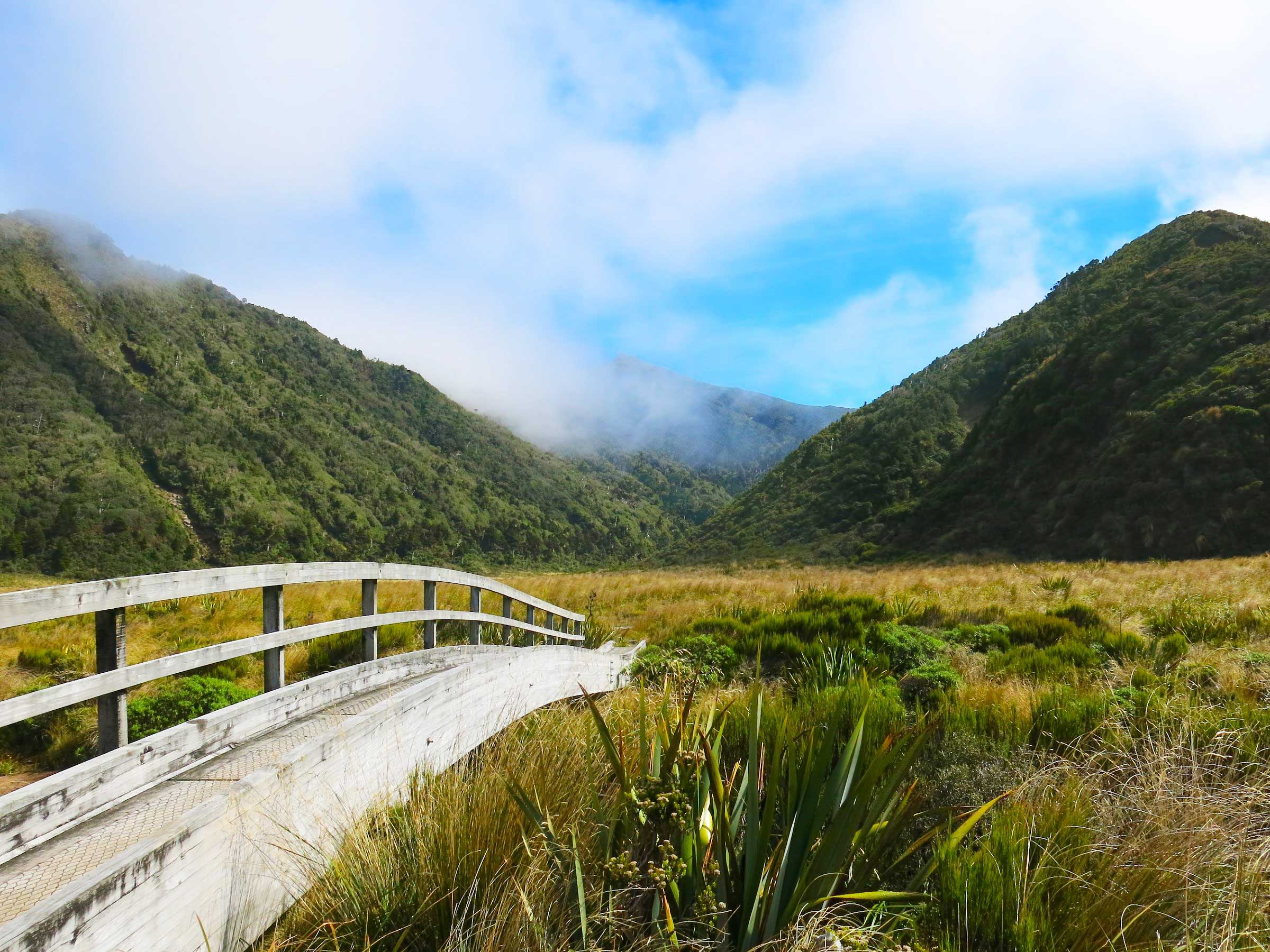A wooden bridge with a handrail traversing marshy tussock land extending to the base of mountains in the distance on the Pouakai Crossing